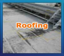 Roof Moisture